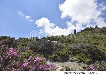 繩紋炎熱的陽光,高山上的高山,登山者若松啟高山,山ru陽也,光谷光孝,山川孝三。 66947359