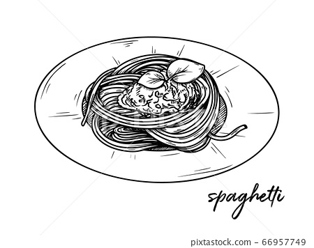 Spaghetti isolated on a white background. Sketch 66957749