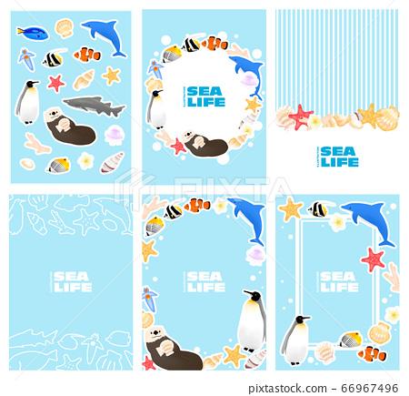 夏季鱼海洋生物插图集 66967496