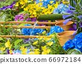 花手水與七彩花朵漂浮 66972184