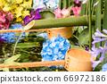 花手水與七彩花朵漂浮 66972186