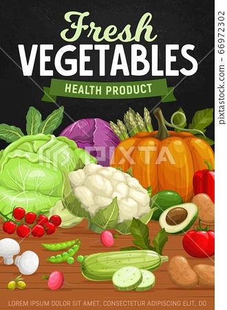 Farm vegetables, healthy food vector 66972302