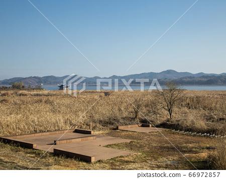 한국 충남 서천군 한산면 신성리갈대밭 66972857