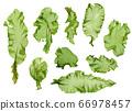 海藻材料Usba Aonori Aosa 66978457