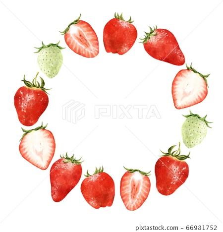 各種草莓花圈水彩風格的插圖 66981752