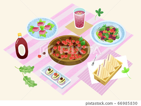 Spring picnic with different food on blanket illustration 019 66985830