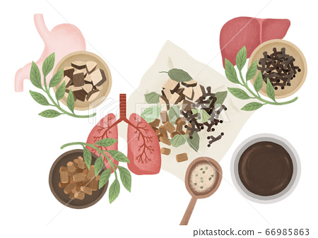 Alternative medicine and treatment concept in flat illustration 015 66985863