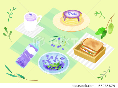 Spring picnic with different food on blanket illustration 008 66985879