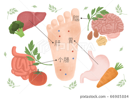 Alternative medicine and treatment concept in flat illustration 003 66985884