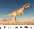 Dinosaur Ceratosaurus in a desert 66987662