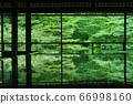 京都新鲜绿色小栗园 66998160