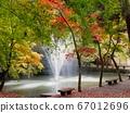 秋天的风景 67012696