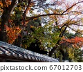 Autumn leaves and temples 67012703