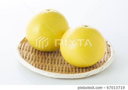 柚子 67013719