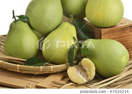 台湾水果,台湾水果,水果,新鲜水果,文旦,中秋节,柚子 67020214