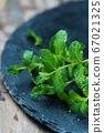 Fresh green mint 67021325