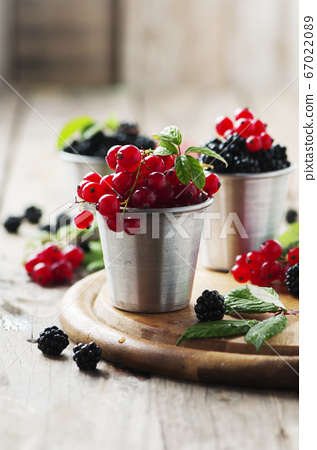 Fresh blackberry and red currant 67022089