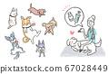 插圖敦促獸醫在獸醫診所使用狂犬病疫苗針對寵物 67028449