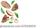 Brasil nuts isolated on white background . Top view with copy space for your text. Flat lay 67030659