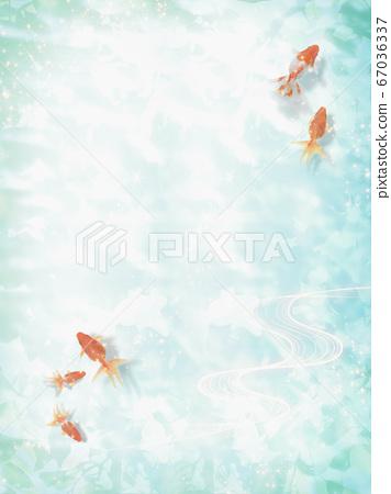 금붕어가 헤엄 수면에 코모 레비가 비치는 여름 이미지 67036337