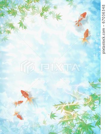 금붕어가 헤엄 수면에 코모 레비가 비치는 여름 이미지 67036348