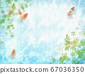An image of summer when a goldfish swims and the sunlight leaks through the water 67036350