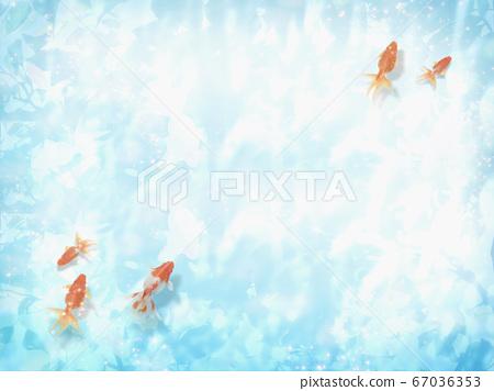 금붕어가 헤엄 수면에 코모 레비가 비치는 여름 이미지 67036353