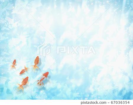 금붕어가 헤엄 수면에 코모 레비가 비치는 여름 이미지 67036354