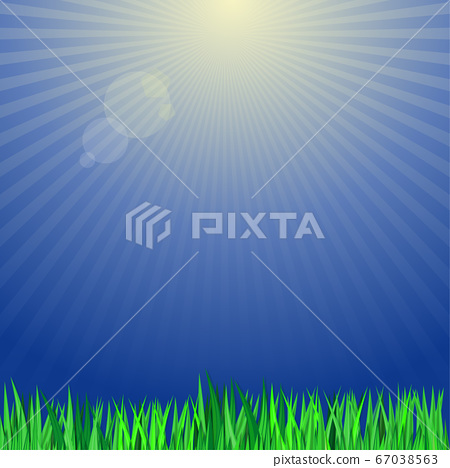 Green grass on a background of the suns rays 67038563