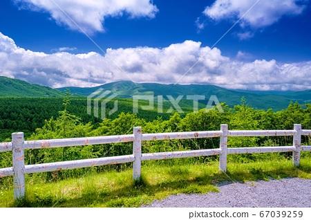 나가노 현 초여름의 白樺高原 석양의 언덕 1 67039259