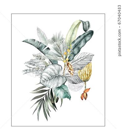 色彩豐富的花卉素材組合和設計元素 67040483