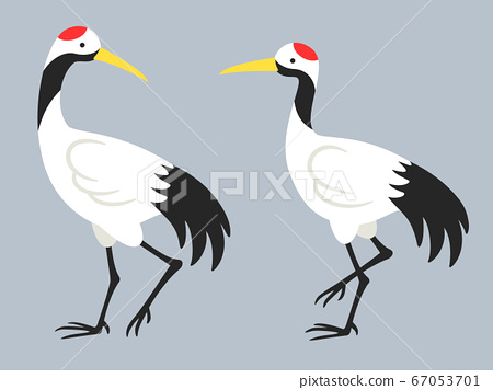 Illustration of a pair of walking cranes 67053701