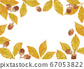 Autumn leaf frame acorn yellow 67053822