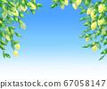 蓝天和柠檬(不亮)的背景插图 67058147