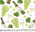 Grapes white wine pattern watercolor style illustration 67061520