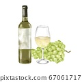 Grapes and white wine watercolor style illustration 67061717
