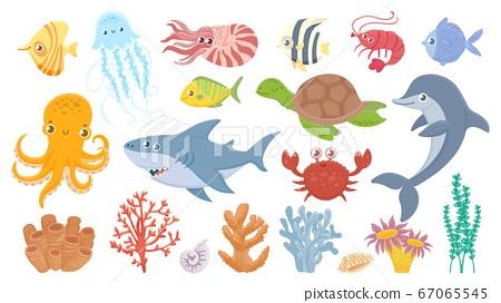 Cartoon sea life. Cute sea fish, aquatic corals, jellyfish and octopus. Funny shark and dolphin. Ocean crab, sea turtle and shrimp vector illustration set 67065545