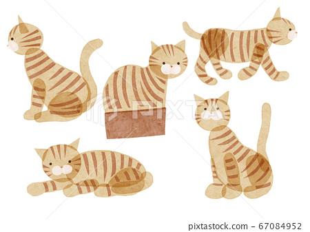 Watercolor style cat illustration tea tiger 67084952