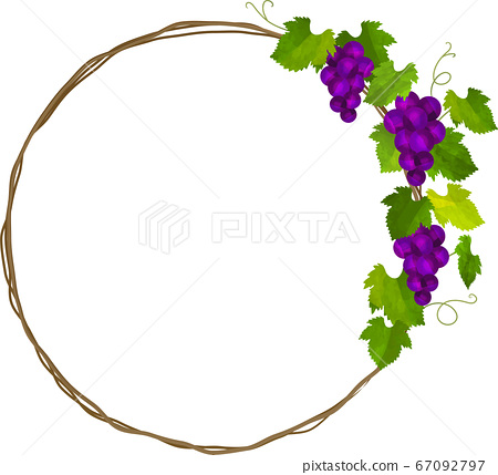 圓框的紫色的葡萄和常春藤,花圈 67092797