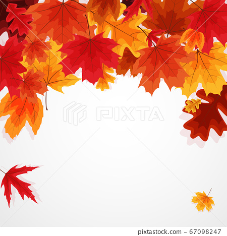 Shiny Autumn Leaves Banner Background. Vector 67098247