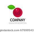 Berry Logo isolated on white background, vector 67099543