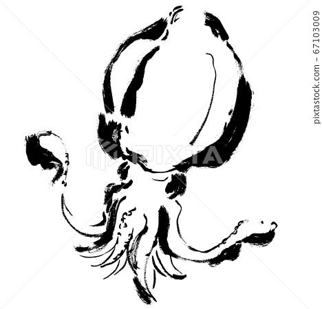 Aori魷魚手繪插圖魷魚圖 67103009