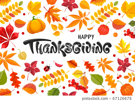 Happy Thanksgiving Day Celebration Typography Lettering With Autumn Leaves, Pumpkin, Rowan And Physalis 67126678
