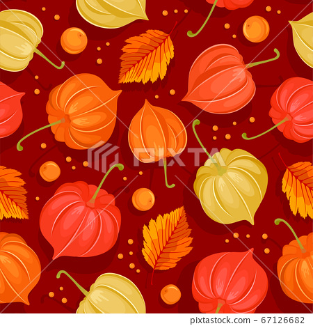 Seamless Pattern With Autumn Leaves And Physalis 67126682