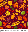 Seamless Pattern With Autumn Leaves 67126685