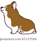 There is a main line with a cute corgi illustration of sitting 67127564