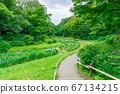 Landscape of a park covered with greenery in Yoyogi, Shibuya-ku, Tokyo 67134215
