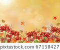 Cluster amaryllis and autumnal scenery 67138427