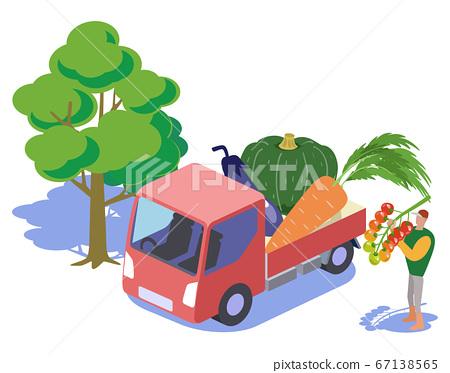 Kitchen garden-transporting vegetables by light tiger 67138565