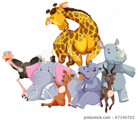 Group of wild animal 67140783